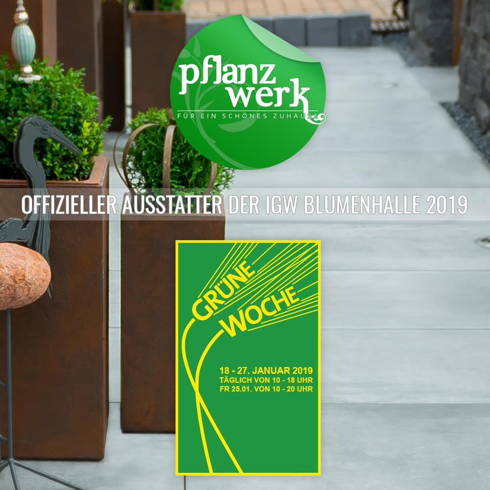 Pflanzwerk ist Ausstatter der IGW Blumenhalle