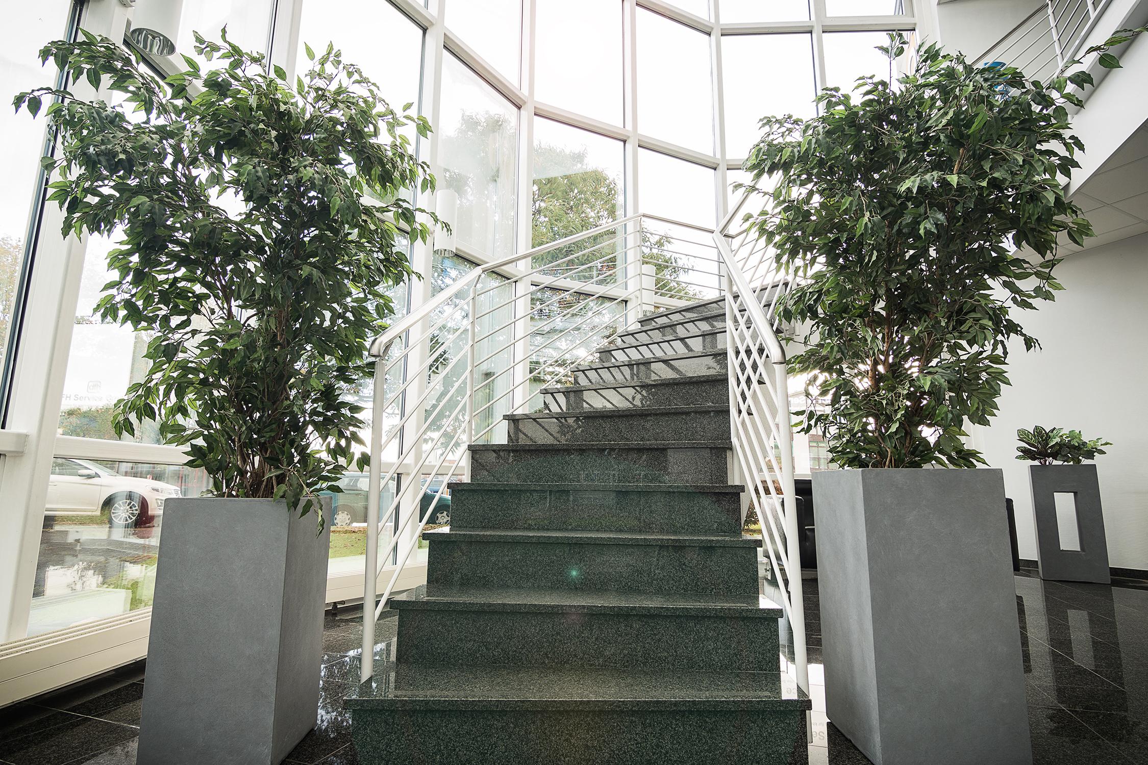 Hohe Pflanzsäulen in groß und klein für drinnen und draussen