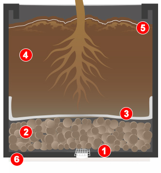 Bepflanzungshinweis