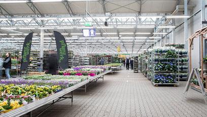 Unsere Gartencenter-Blumenhalle für Pflanzen, Palmen und Blumen
