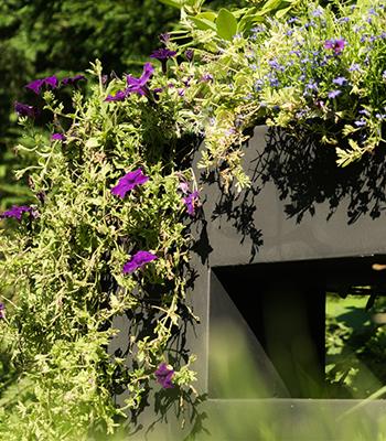 Pflanzenkübel grün bepflanzt im Garten - Pflanzwerk