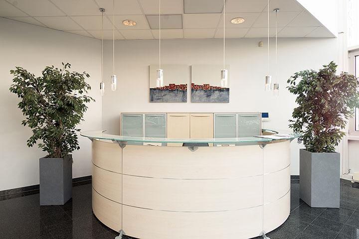 Blumenkübel und Pflanzen im Büro